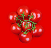 Minimale samenstelling van tomaten op rode achtergrond Royalty-vrije Stock Foto