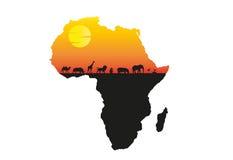 Minimale Vektorillustration Afrika-Sonnenuntergangs Stockbild