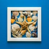 minimalism Шедевр в деревянной рамке закрепляя изолированное море путя обстреливает белизну Взгляд сверху Плоское положение Конце Стоковые Фотографии RF