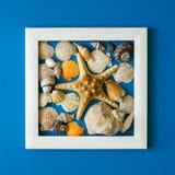minimalism Шедевр в деревянной рамке закрепляя изолированное море путя обстреливает белизну Взгляд сверху Плоское положение Конце Стоковые Изображения