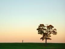 minimalism Стоковые Фото
