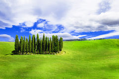 Minimalism i naturen - val d'Orcia, Tuscany, Italien Royaltyfri Bild