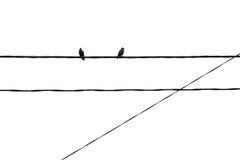 Minimalismo geométrico, pájaros Foto de archivo
