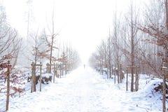 minimalismus stockfoto
