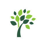 Minimalist green tree logo symbol. Minimalistic illustration of a tree symbol that can be used as logo symbol or as isolated design element Royalty Free Stock Image