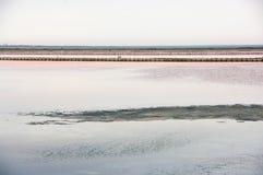 Minimalist landskap av den salta sjön arkivbilder