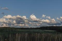Minimalist landskap med det gröna fältet och molnig blå himmel arkivbild