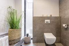 Minimalist restroom design. Including wall hung toilet, and a plant in a large basket Stock Images