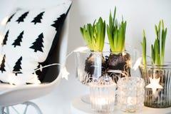 Minimalist room decor Royalty Free Stock Images