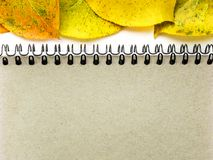 Minimalist template with copy space by top view close up macro photo blank sheet of notepad on a spring of sand color with yellow. Autumn leaves, a place for an stock photography