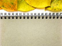Minimalist template with copy space by top view close up macro photo blank sheet of notepad on a spring of sand color with yellow. Autumn leaves, a place for an stock photos