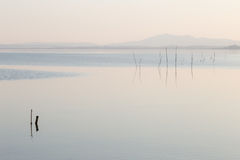 Minimalist view of a lake Stock Image