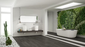 Minimalist white bathroom with vertical and succulent garden, wo. Oden floor and pebbles, hotel, spa, modern interior design Royalty Free Stock Photos