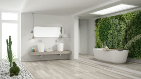 Minimalist white bathroom with vertical and succulent garden, wooden floor and pebbles, hotel, spa, modern interior design stock photography