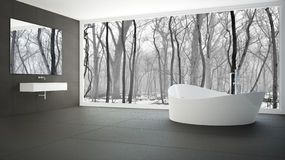 Minimalist white and gray bathroom with big panoramic window, wi. Nter wood in the background Royalty Free Stock Images