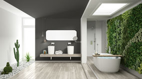 Minimalist white and gray bathroom with vertical and succulent g. Arden, wooden floor and pebbles, hotel, spa, modern interior design Royalty Free Stock Photography