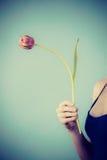 Minimalista strzelający kobiety mienia purpur tulipan zdjęcie royalty free