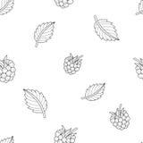 Minimalistic无缝的果子样式 免版税图库摄影