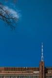 Minimalistic-Ansicht Fernsehturm vom Staatseigentum botanischen Gartens St Petersburg Lizenzfreie Stockfotografie