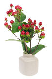 Minimalistic  bouquet  - mini red  berries on branches Stock Photos