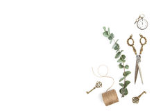 Minimalistic flat lay Vintage tools green eucalyptus branches. Minimalistic flat lay. Vintage tools and green eucalyptus branches on white background royalty free stock photos