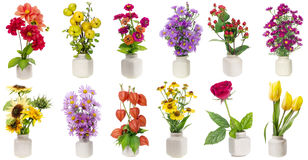 Minimalistic  floral bouquets  set Stock Image