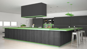 Minimalistic gray kitchen with wooden and green details, minimal. Interior design Royalty Free Stock Photos