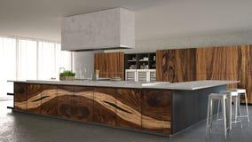 Minimalistic kök för vit och för grå färger, med klassiska wood monteringar, lyxig inre royaltyfri bild