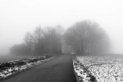Minimalistic landscape with road through woods on snowy mist Stock Photo