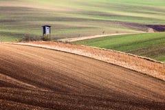 Minimalistic-Landschaft mit den Wellenhügel-, Grünen und Braunenfeldern lizenzfreie stockfotografie