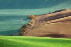 Minimalistic-Landschaft mit den Wellenhügel-, Grünen und Braunenfeldern lizenzfreie stockfotos