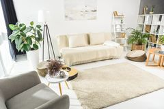 Minimalistic living room interior with white furniture and plants, lit stock photo