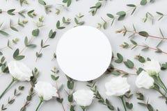 Minimalistic-Modell von weißen Blumen und von Eukalyptus verlässt auf grauer Tischplatteansicht flache Lageart lizenzfreie stockfotos
