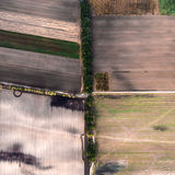 Minimalistic photograph of the beveled field, taken from the air. Stock Photos