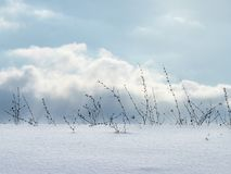 Minimalistic Snow Scene Stock Photography