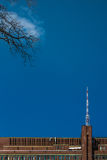 Minimalistic view TV tower from Saint Petersburg botanical garden public property. TV tower from Saint Petersburg  botanical garden Royalty Free Stock Photography