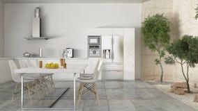Minimalistic vitt kök med den inre trädgården, minsta inre D royaltyfria foton