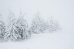 Minimalistic-Weihnachtsbäume unter starken Schneefällen im Nebel stockfotos