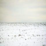 Minimalistic Winter Landscape. Field in Litoměřice, CZE Royalty Free Stock Images