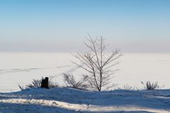 Minimalistic winter landscape stock images