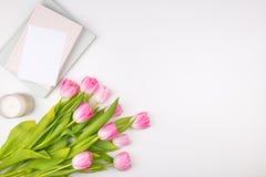 Minimalny projektujący mieszkanie kłaść z różowymi tulipanów kwiatami z płatkami i zdjęcia stock