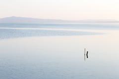 Mininalist view of a lake Royalty Free Stock Photography