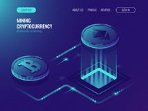 Mining bitcoin and ethereum crypto currency, mining server farm room, video card, data processing ultraviolet isometric. Vector illustration Royalty Free Stock Photo