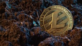 Mining crypto currency - Litecoin. Online money coin in the dirt ground. Digital currency, block chain market, online business.  stock footage
