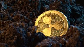 Mining crypto currency - Ripple coin. Online money coin in the dirt ground. Digital currency, block chain market, online business.  stock footage
