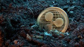 Mining crypto currency - Ripple coin. Online money coin in the dirt ground. Digital currency, block chain market, online business.  stock video footage