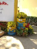 Minions Flower Pot - DIY Minion Planting Pot - Minions Recycle Project For Creative Kid stock image