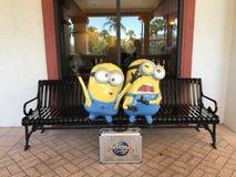 Minions at Sheraton Vistana Villages Pool, Orlando, Florida Royalty Free Stock Image