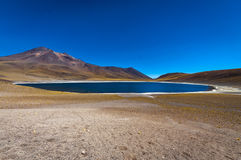 Miniques盐水湖在智利,南美 免版税库存照片