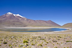 Miniques Lagoon and Mountain in Atacama Desert Royalty Free Stock Images